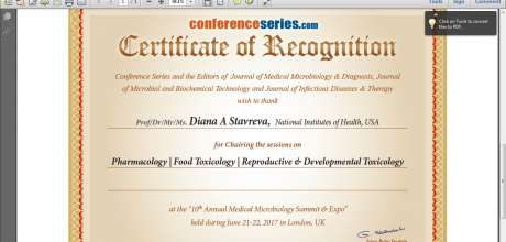 12th International Conference On Vascular Dementia